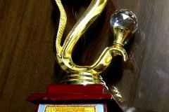 Atal-Ratna-Award